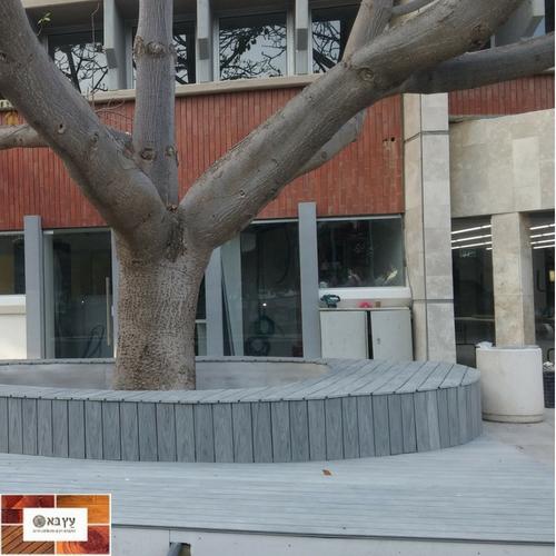 אדנית מלוחות בולדק מסביב לעץ לשימור במכללת ספיר